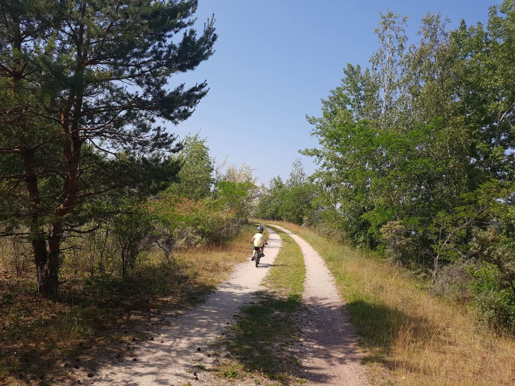 Radtour Halbinsel Geiseltalsee