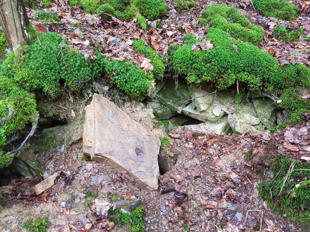 Kleine Höhlen am Wegesrand. Hier wohnen die Feuersalamander.