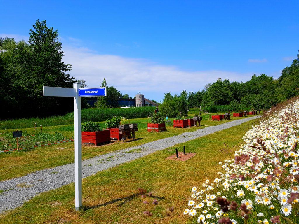Ausßengelände Natureum Niederelbe mit Wegweiser, Wilden Blumen und Kräutergarten