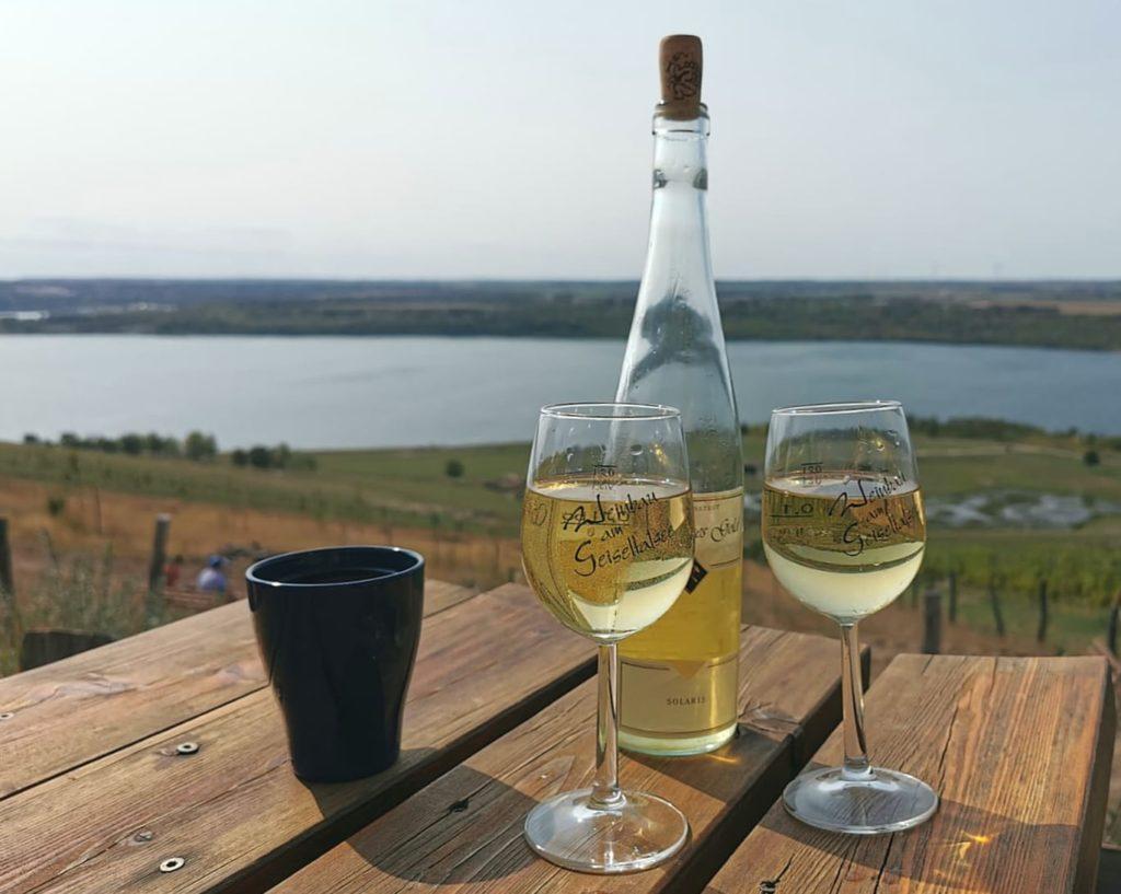 Wein auf dem Weinberg goldener Steiger trinken, Weinempfehlung Solaris Auslese