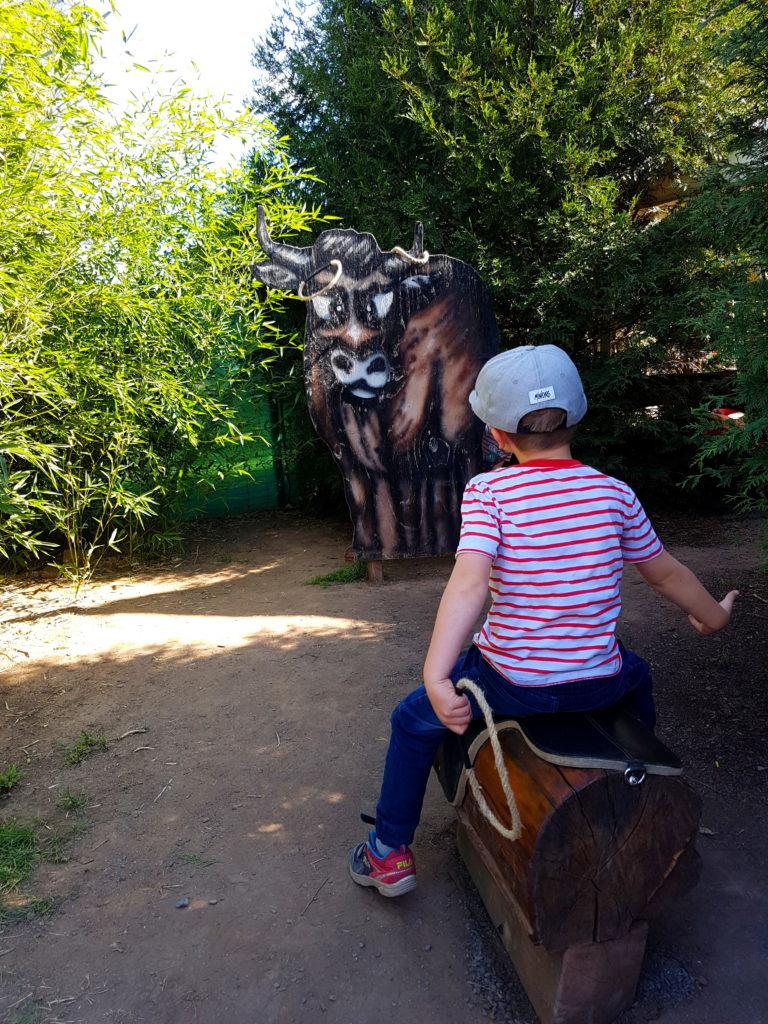 Junge beim Lasso Werfen im Erlebnistierpark Memleben