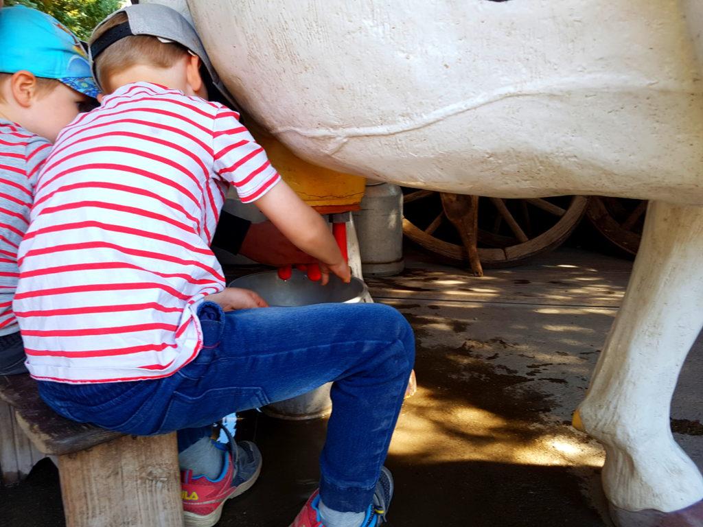 Jungs melken am Kuhmodell im Erlebnis Tierpark Memleben