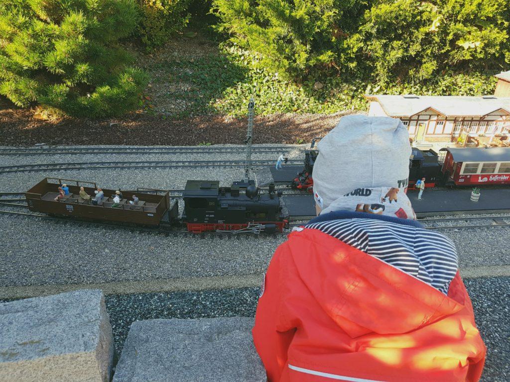 miniaturenpark wernigerode, kind schaut sich die harzer schmalspurbahn an, ausflug hasseröder ferienpark