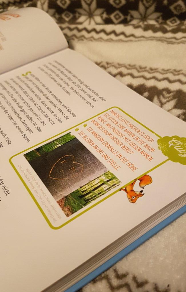 buchempfhlung, naturbuch für kinder, sachbuch, wald und bäume