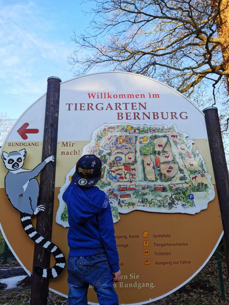 Tiergarten Bernburg Schild mit Lageplan