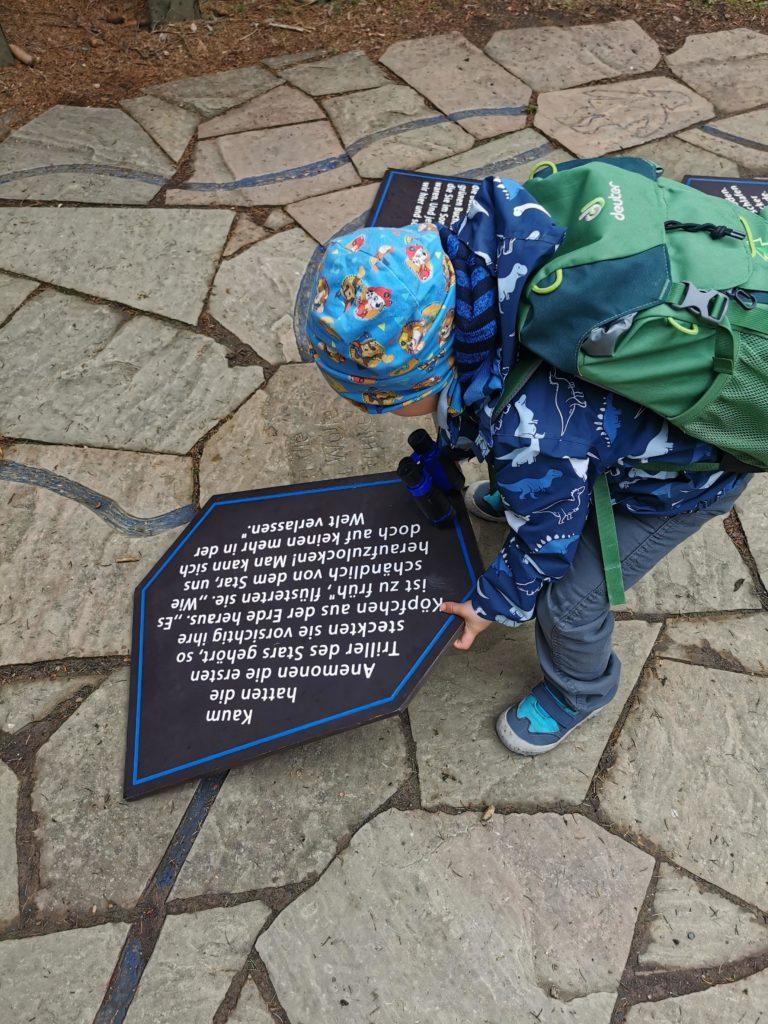 Sagenspiel/Sagenpuzzle auf dem Kinderwanderweg Naturmythenpfad im Harz
